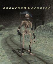 Accursed Sorcerer