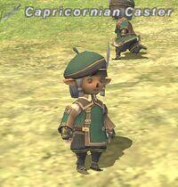 CapricornianCaster