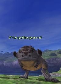 Rearing-tinybugard