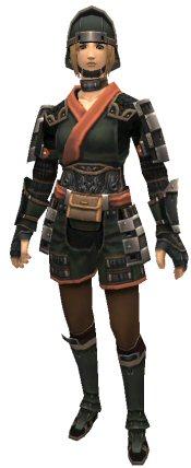 Kirin's Armor