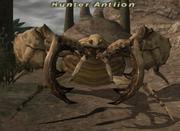 Hunterantlion