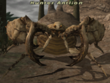 Hunter Antlion