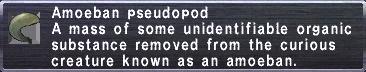 Amoeban Pseudopod