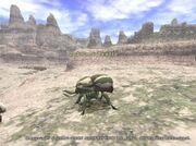 Goblin's Beetle