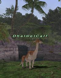 Rearing-dhalmelcalf