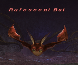 Rufescent Bat