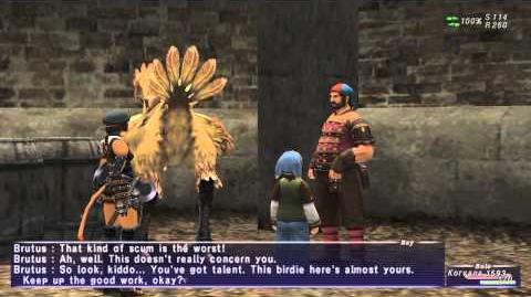 «FFXI-Movie» 0136 BST 1 - Chocobo's Wounds