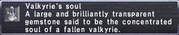 Valkyrie's Soul