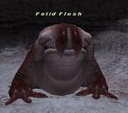 Fetid Flesh