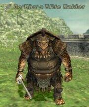 Go'Bhu's Elite Raider
