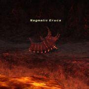 Magmatic Eruca