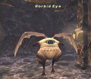 Morbid Eye