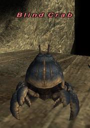 Blind Crab