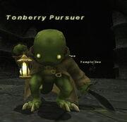 Tonberry Pursuer