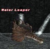 WaterleaperNM