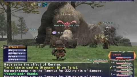 FFXI NM Saga 262 Tammuz VNM Full Battle