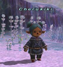 Cherukiki Trust