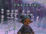 Trust: Cherukiki