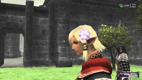 «FFXI-Movie» Unity Concord (Maat)