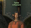Tanie
