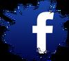 Fbook widget