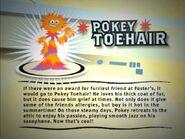 Pokeytoehairgallery