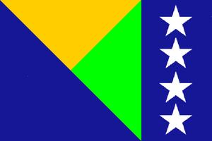 Platina bandera