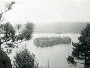 Whitefish Lake Island 1967