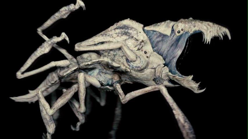 würmer parasiten bilder bei fischen.jpg