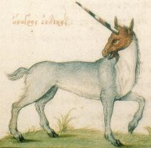 Unicorn-ManuelPhiles