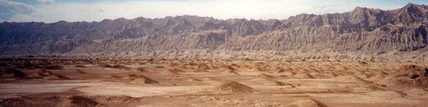 Habitat-desert