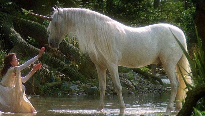 Unicorn-Legend