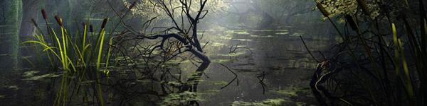 Habitat-wetland