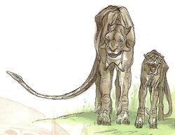 Tuskcats