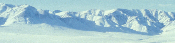 Habitat-arctic