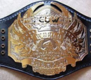 PCUW World Heavyweight Championship