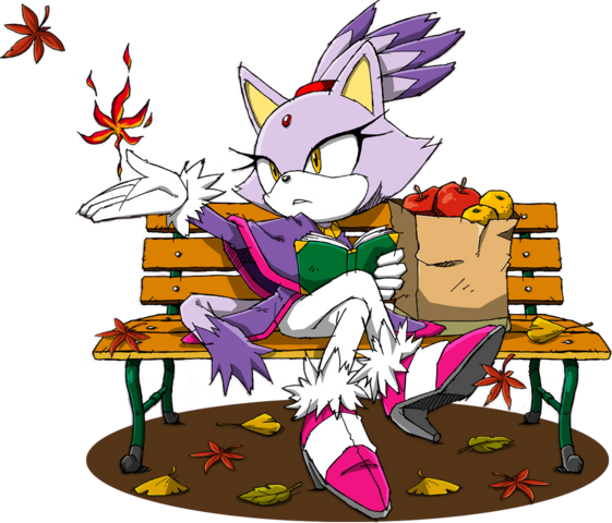 File:Sonic Channel - Blaze the Cat 2013a.png