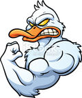 Strong Duck