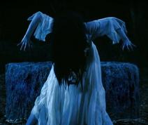 Sadakaya Sadako vs. Kayako