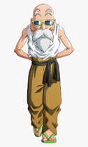 Master Roshi Dragon Ball Super
