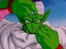 Piccolo taking off gear