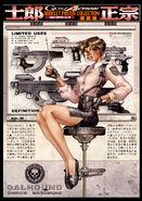 Seburo Weapons Chart