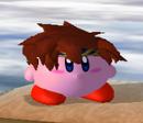 SSBM Kirby hat Roy