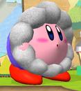 SSBM Kirby hat IceClimber