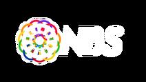 NBS2020-0