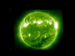 Dwaf Star Green