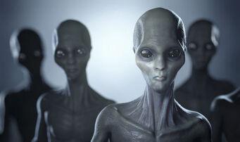 Alien-Abduction-858863