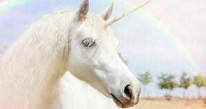 Unicorn-kisses-seltzer-1024x545