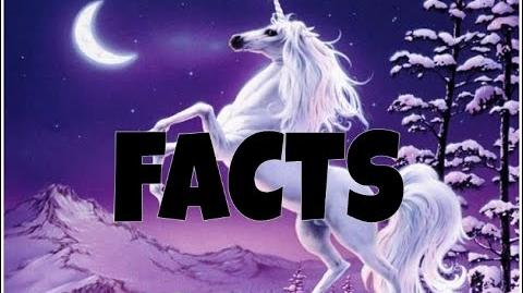 FACTS ABOUT UNICORNS - CAN YOU BELIEVE IT?!?!
