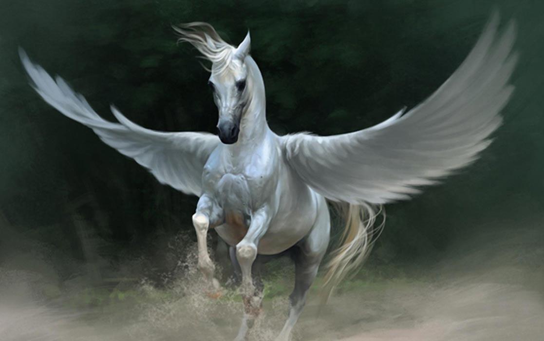Pegasus Fiery Demons Wiki Fandom Powered By Wikia